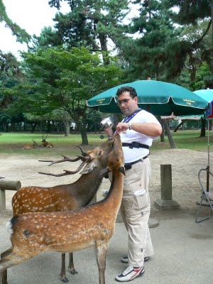 Visiting Nara