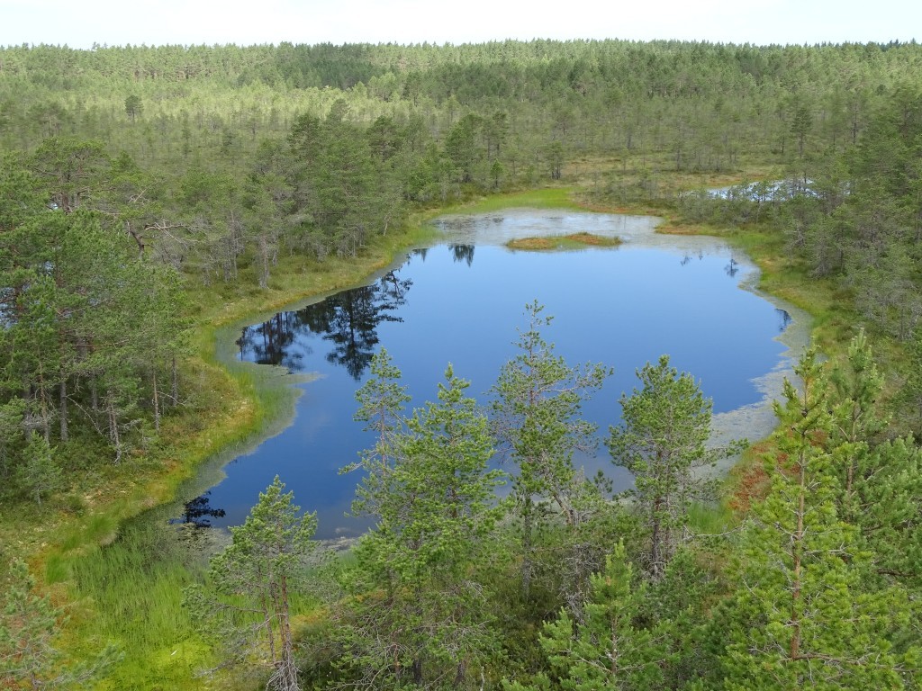 16. Estonian national park
