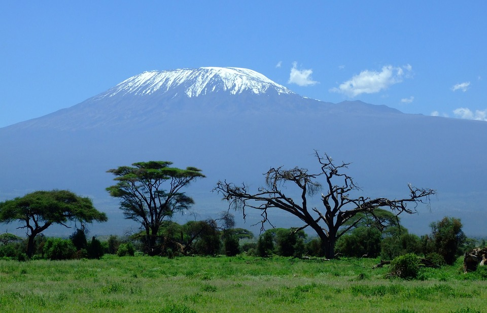 Kilimanjaro seen from Amboseli
